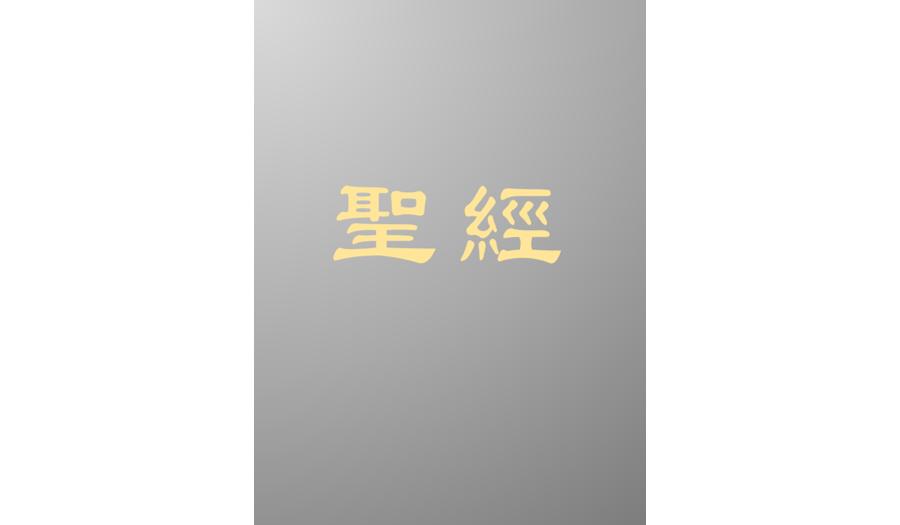 Catholic_Chinese_Bibles_TC