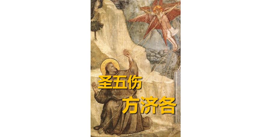 圣五伤方济各(简)_pdf