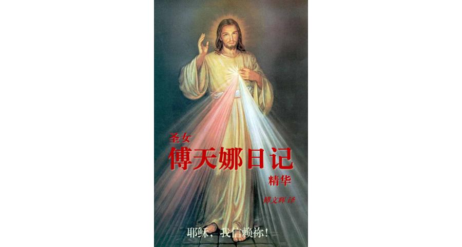 圣女傅天娜日记精华(简)_pdf